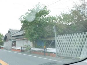 このあたりは、国道6号沿いに街が広がっていました。今でも付近はゴーストタウンのままです。