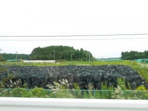 黒いフレコンに収められるのは、汚染した土砂か、植物か...