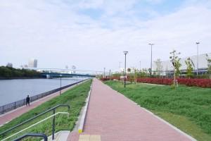 市場南側の遊歩道。北側、南側では、このように水辺と一段高いところの両方に歩道が用意されています。