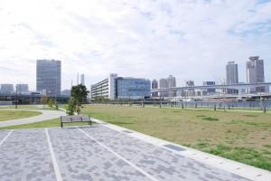 南西側には、のんびりするには良い広場が広がります。ただし、風は強いです。