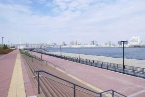 桟橋もあります。荷役用ではなく、水上バス等の観光をターゲットにしているのでしょうか。