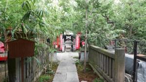 ここから、『陽運寺』です。山門をくぐり、境内に至る道。