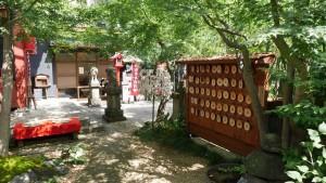 『陽運寺』境内。当日はとても暑い日でしたが、涼し気な光が癒やしてくれます。