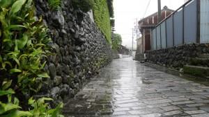 参道から一筋離れると、こんな静かな路地がありました。