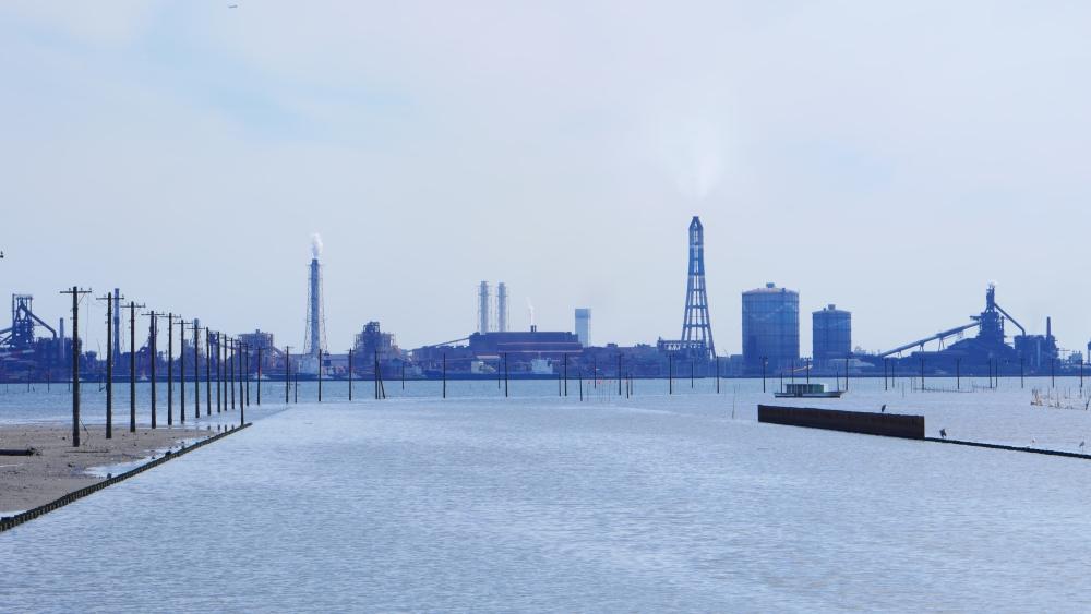 同じく江川海岸。前の写真とは反対側から撮影したものです。正面に見えるのは、新日鉄の工場や火力発電所です。