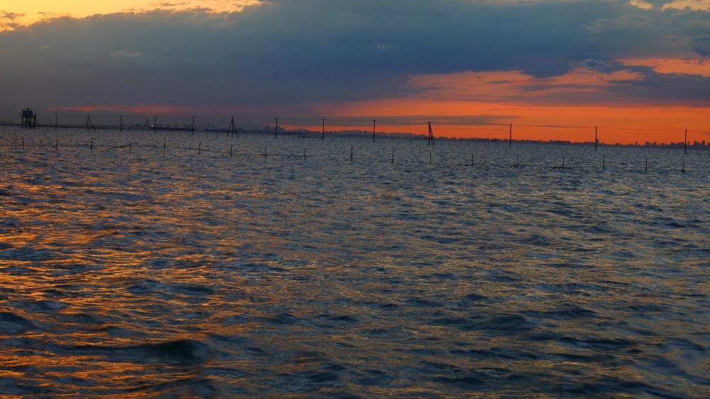 江川海岸側から久津間海岸の海中電柱を望みます。