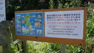 島内には猫の餌を持ち込んではいけません。人間の食べ物をあげるのもNGです。