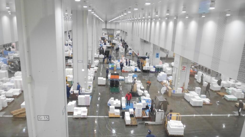 豊洲市場の青果棟。朝早いので、まだ人が少ないです。